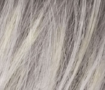 Silver blonde rooted (60.24R)